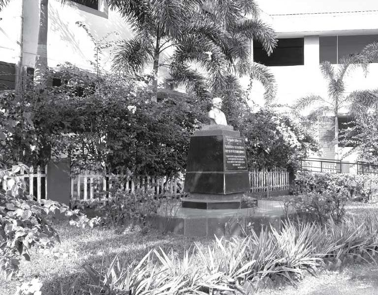 history-school1-768x768-dmc